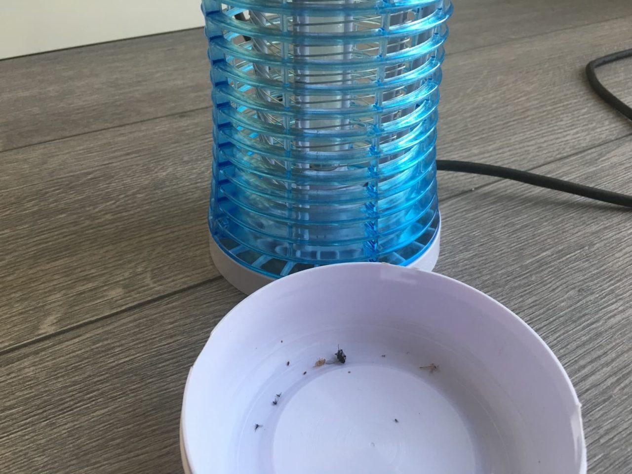Backture Mückenfalle Auffangbehälter mit Insekten
