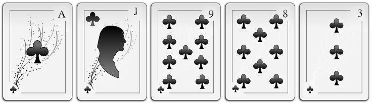 Five Card Draw Poker - Ein Spiel für Camping & Lagerfeuer 10