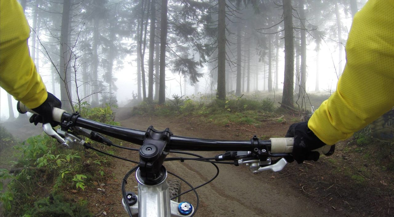 Mountainbike Wald