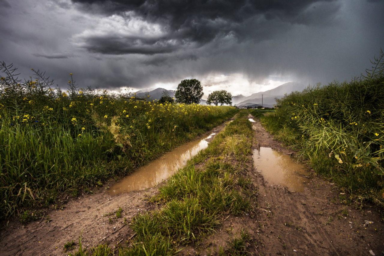 Feldweg nach dem Regen mit Pfützen