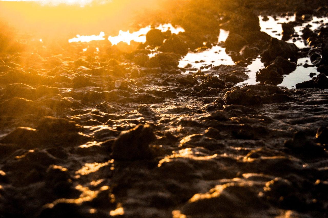 Schlamm mit kleinen Wasserpfützen im Sonnenaufgang