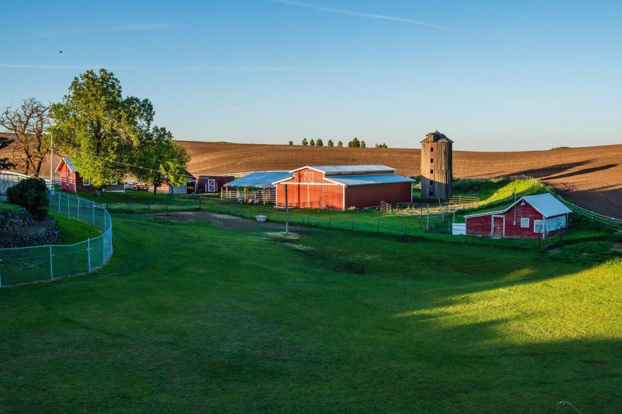 Farm Wwoofing