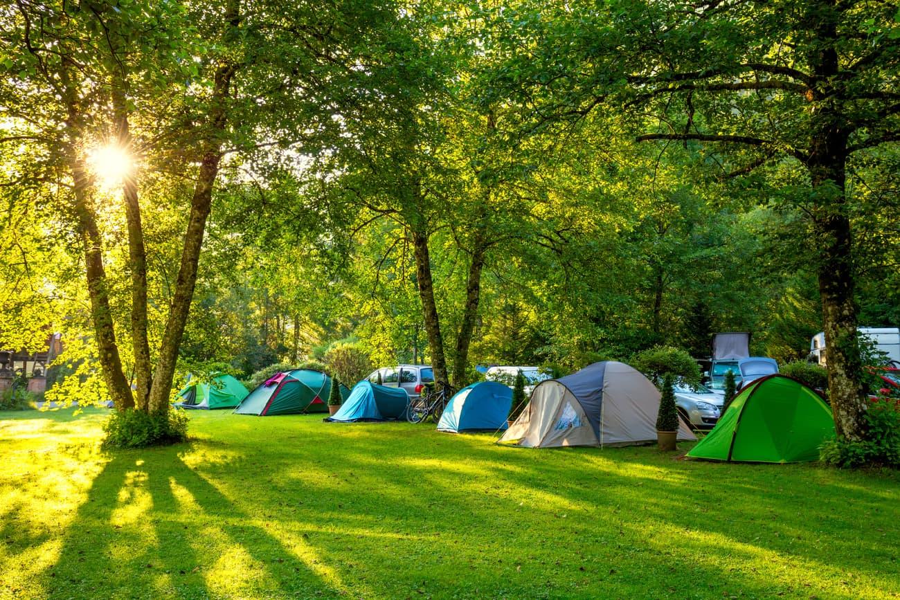 Zeltplatz mit Zelten auf Wiese